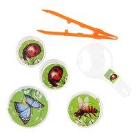 Bugs World Insecten Observatiesetje, 5dlg