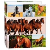Opbergmap Paarden