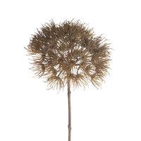 Kunsttak Heracleum Lichtbruin, 81cm
