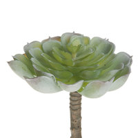 Kunstplant Vetplant, 13cm