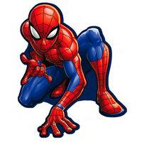 Kussen Spiderman 35x35cm
