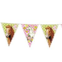 Vlaggenlijn Paarden