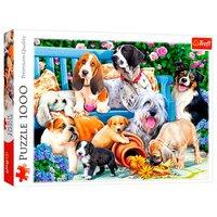 Puzzel Honden in de Tuin, 1000st.