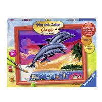 Schilderen op Nummer Wereld van de Dolfijnen