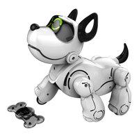 Train je eigen Robot Pupbo