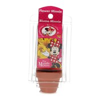 Minnie Mouse Bloempotje Versieren