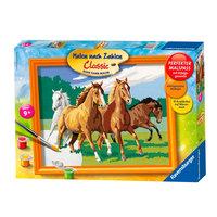 Schilderen op Nummer - Wilde Paarden