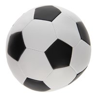 Soft Voetbal