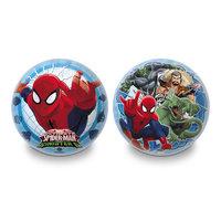 Spiderman Decorbal