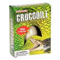 Fossiel-ei Krokodil